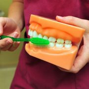 DENTIST IN OTTAWA Teeth Cleaning and Plaque